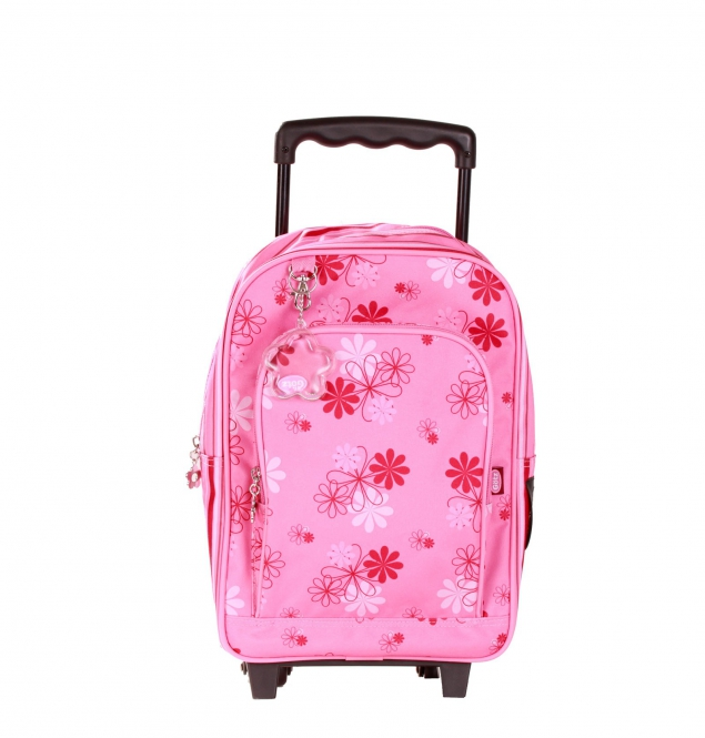 Trolley case (small)